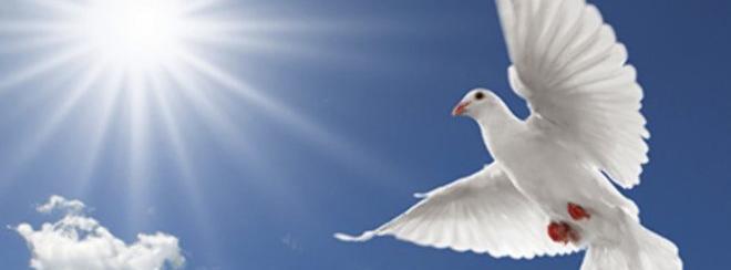 peace-660x330.jpg