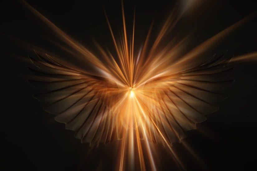 ANGELS-2-960x640.jpg